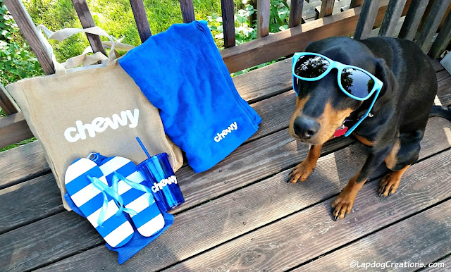 Thank you to our friends at #Chewy for the pawesome summertime goodies! #NationalSunglassesDay #DobermanPuppy #RescueDog #ChewyInfluencer #SummerFun ©LapdogCreations