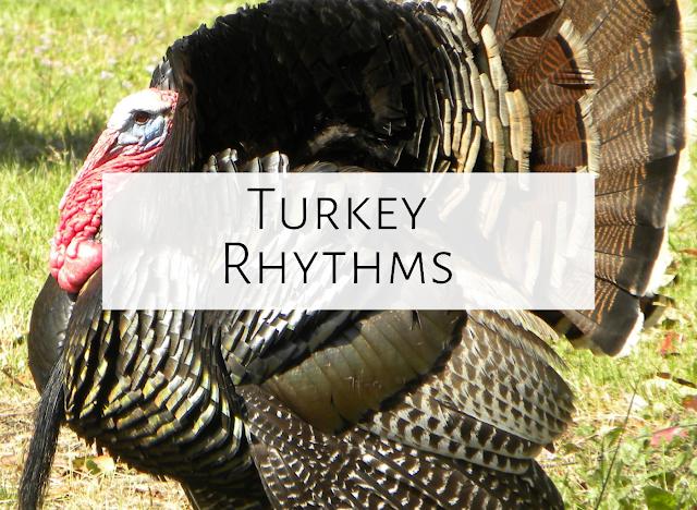 Turkey Rhythms