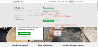 Godaddy Blogger SSL Ayarları
