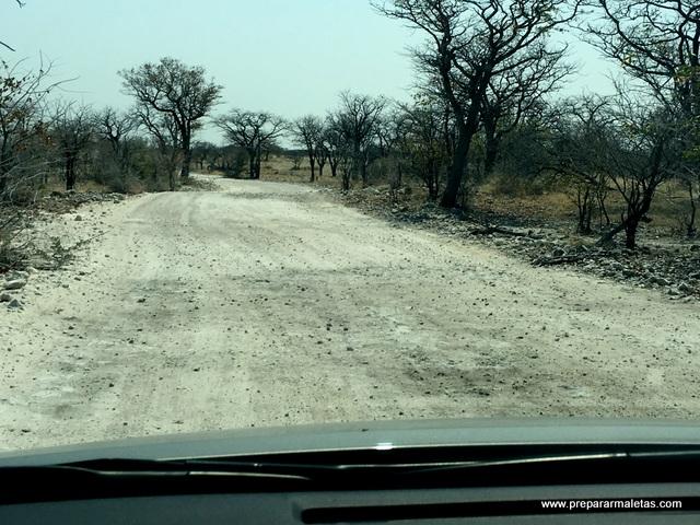 caminos de tierra durante el safari en Namibia