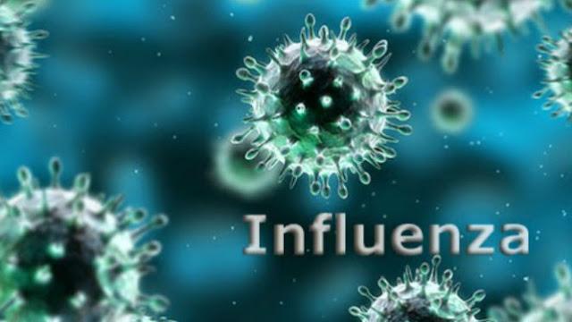 Badan Kesehatan Dunia (WHO) Peringatkan Dunia Untuk Siap Hadapi Wabah Influenza