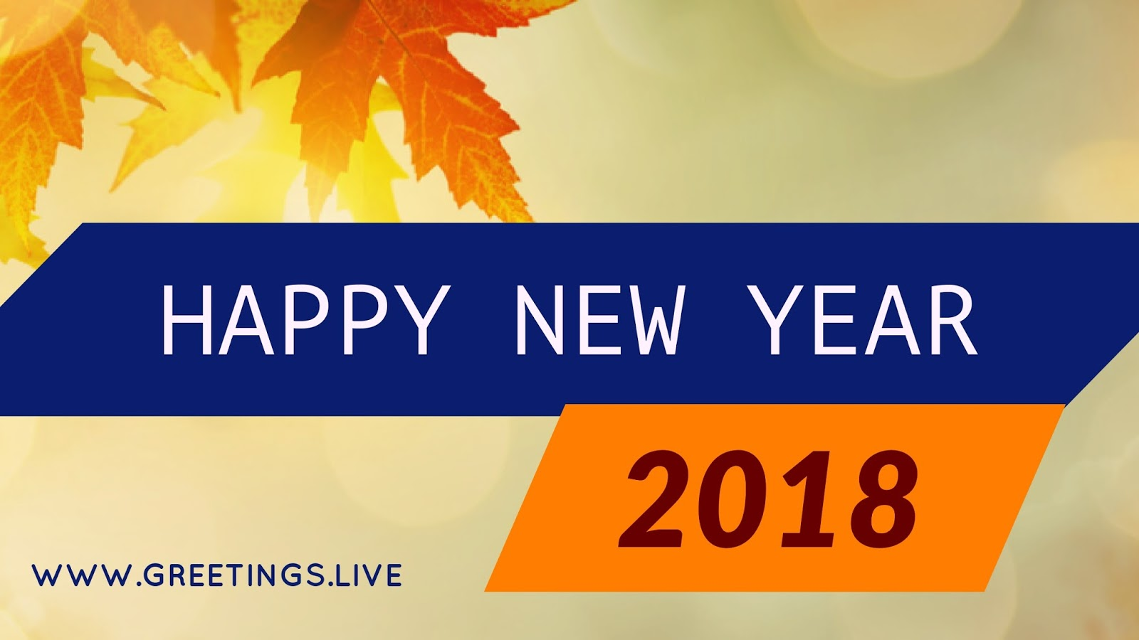2018 New Year Wishes Greetings 5 Simple New Year Celebration