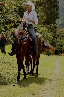 Horse Talk Panama: Boquete Horse Lovers • Cultures and
