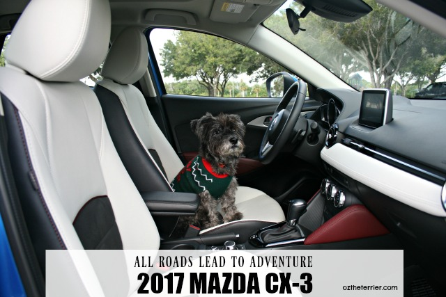 road to adventure in 2017 mazda cx-3