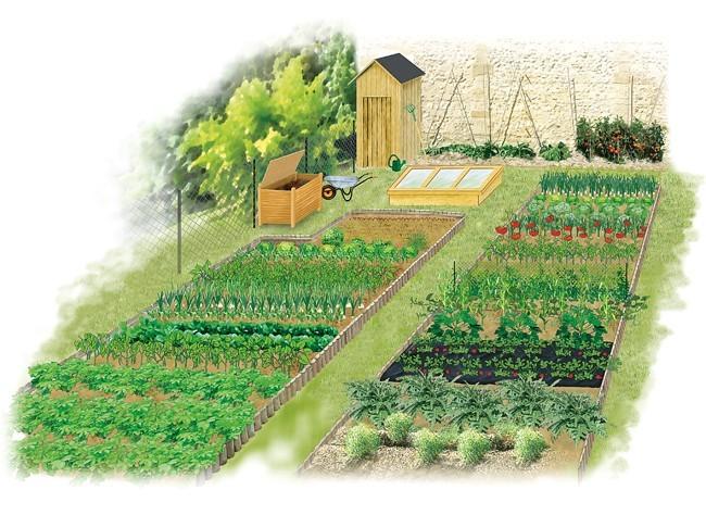 plus de 1000 id es propos de jardin potager sur pinterest treillis serres et palettes. Black Bedroom Furniture Sets. Home Design Ideas