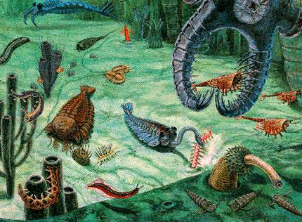 Período Cambriano (570 Milhões de anos)
