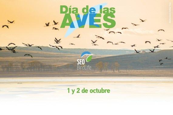 Celebra el  Día Mundial de las Aves 2016 en Zoo Aquarium