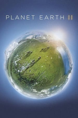 Planeta Terra 2 Torrent 720p / BDRip / Bluray / HD Download