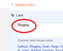 Cara Menulis Postingan, Menambahkan Gambar dan Label Pada Blog Blogspot Bagi Pemula