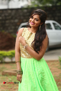 Actress Aswini Pictures at Ameerpetalo Audio Success Meet 0091