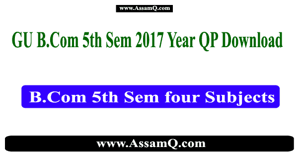 B.Com 5th Sem 2017 old year question paper Gauhati University [MM, RFB, FM, BE]
