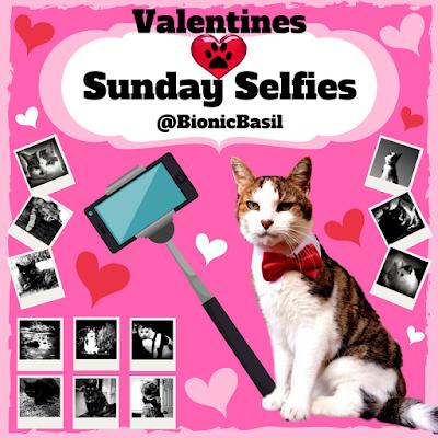 Valentine's Selfies ©BionicBasil®