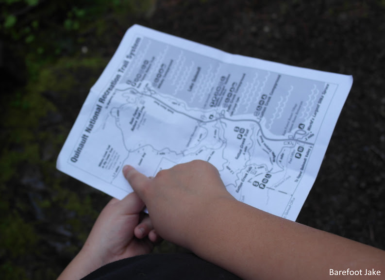 Quinault trail map
