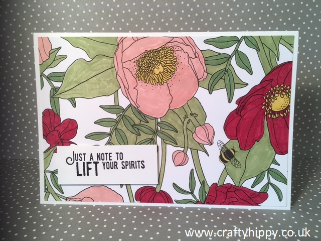 Inside the Lines Designer Series Paper, Stampin' Up! FREE with Sale-a-bration