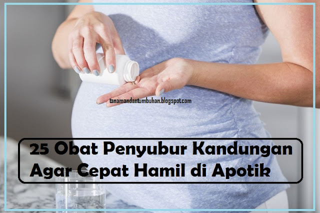 25 Obat Penyubur Kandungan Agar Cepat Hamil di Apotik