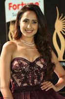 Pragya Jaiswal Sizzles in a Shantanu Nikhil Designed Gown  Exclusive 026.JPG