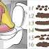 BELIEVE IT OR NOT, YOUR POOP CAN TELL IF YOU ARE HEALTHY OR NOT!