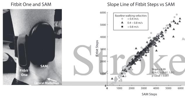 図:Fitbit SAM 脳卒中患者の歩行