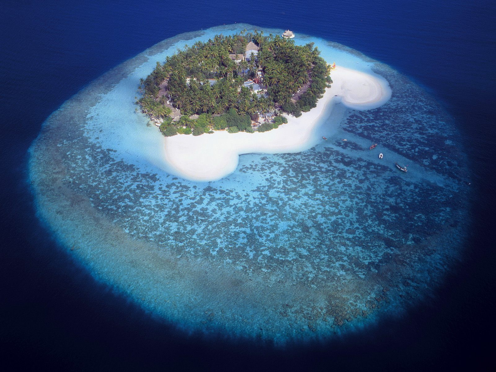 Islands In The Maldives With House Reefs