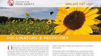 bees, pollinators, pesticides