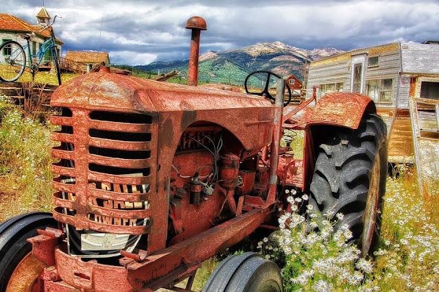 tractor field rusty brown green grass flower white