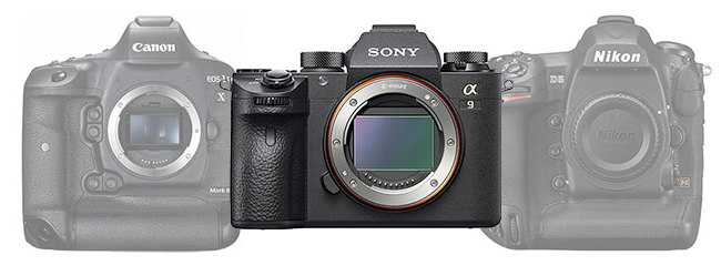 Сравнение Sony A9, Canon 1D X Mark II и Nikon D5