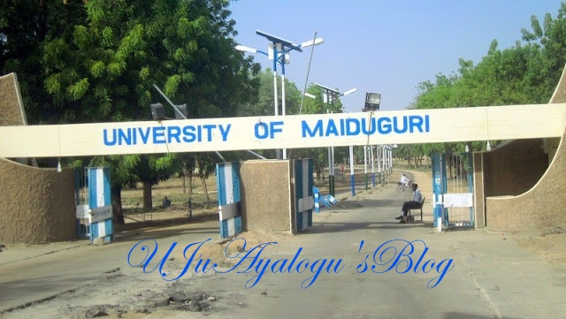 3 suicide bombers hit University of Maiduguri