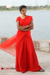 Pagiri Movie Gallery ~ Bollywood and South Indian Cinema Actress Exclusive Picture Galleries
