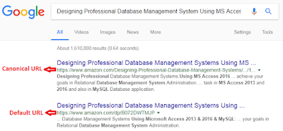 Screenshot: Canonical url from google search results