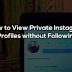 How to View A Private Instagram without Following them