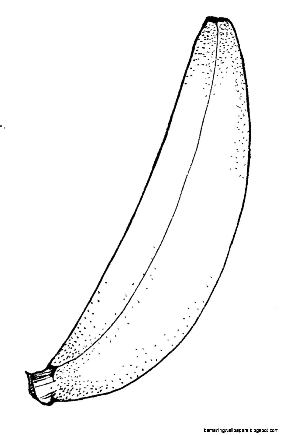 Fruit Clipart Black And White   Amazing Wallpapers
