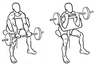 preacher,preacher curl,preacher for biceps,how take preacher,best workouts for biceps