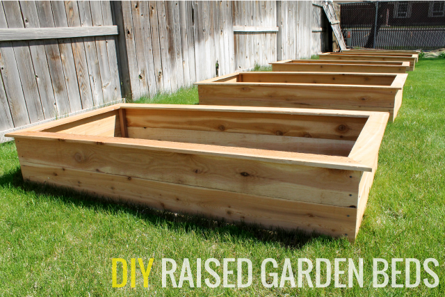 Building Raised Garden Bed Plan