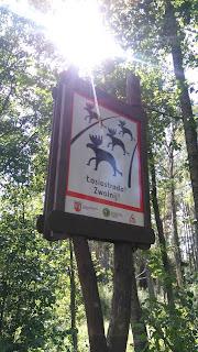 Łosiostrada, zwolnij - znak w Biebrzańskim Parku Narodowym