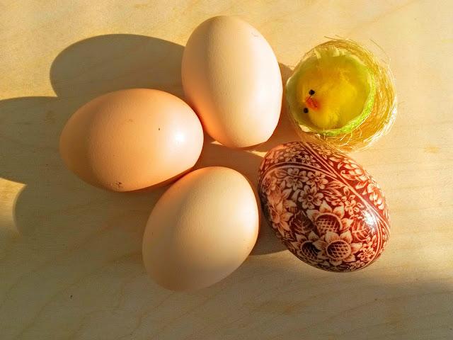 Wybierz dobre jajko