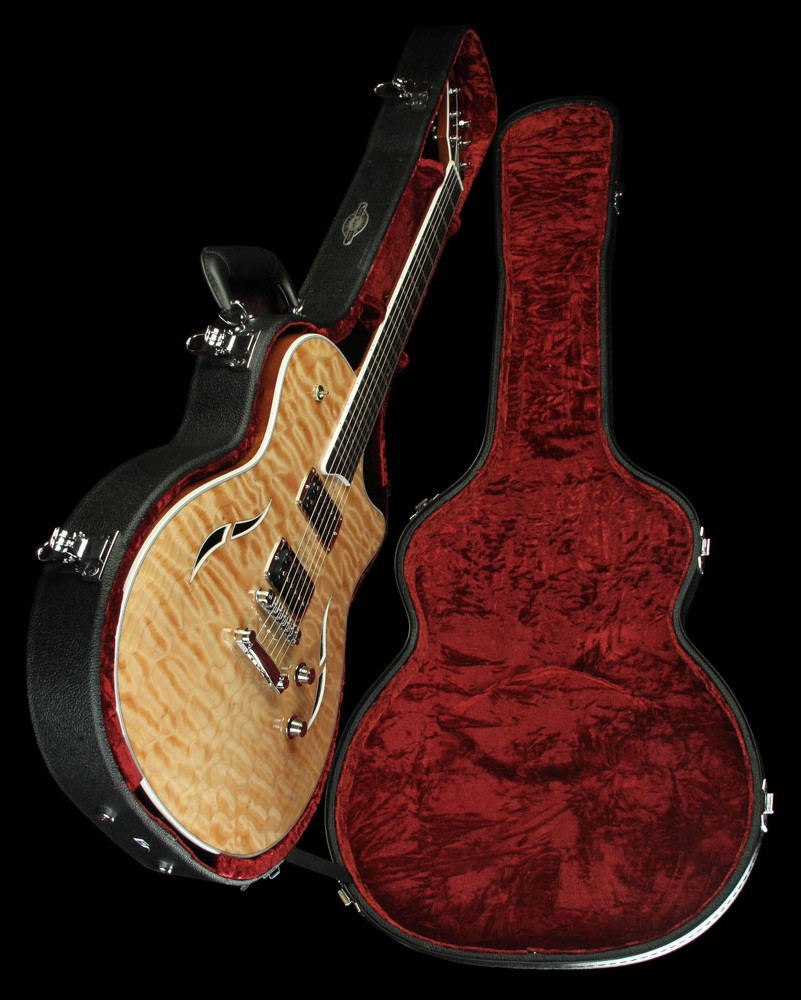 guitar acoustic taylor t3