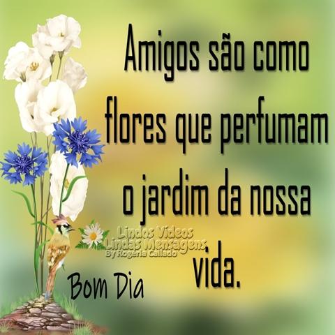 Amigos são como  flores que perfumam  o jardim da nossa vida.  Bom Dia!