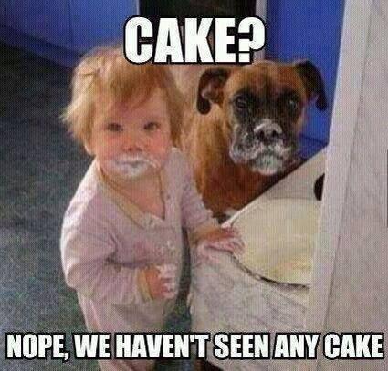 Funny Memes For Kids15