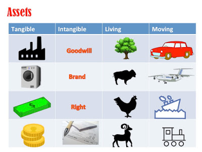 Various examples of assets