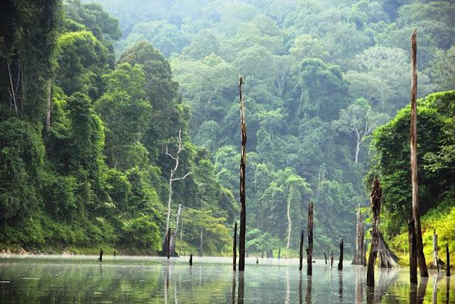 royal-belum-banding-lake-malaysia