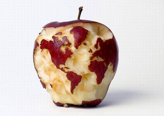 timeless design 13c35 95628 apple-globe WupL9 6648.jpg