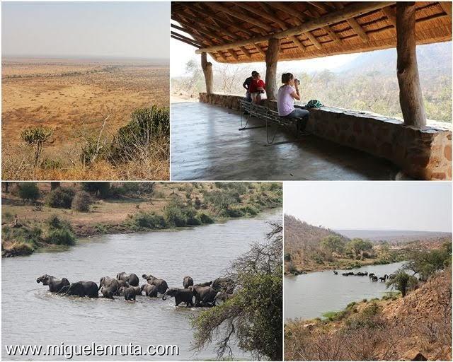 Safari-por-libre-en-Kruger-Shukuza-miradores en Shukuza