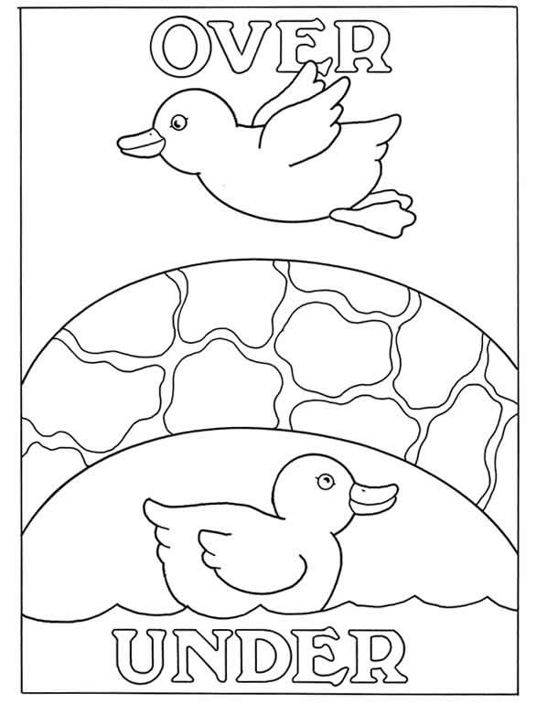 inkspired musings: Duck, Duck, Goose!