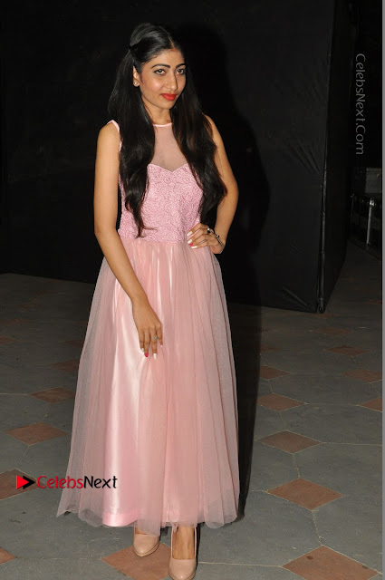 Actress Nidhisha Reddy Pos in Beautiful Pink Dress at Virus Telugu Movie Audio Launch .COM 0001.JPG