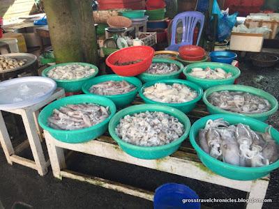 live shellfish