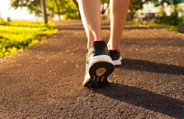 Ecja, Sporti dhe Shëndeti