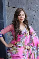 Angela Krislinzki Rogue Movie Fame Telugu Actress in Saree Backless Choli 120.JPG