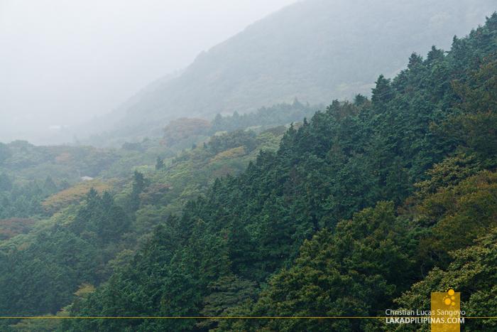 Hakone Free Pass Tozan View