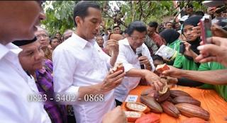 AGEN NASA DI Pasie Raja Aceh Selatan - TELF 082334020868