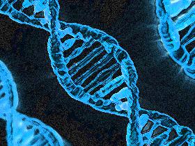 情報の遺伝子(素材使用)